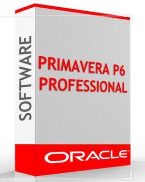 Primavera P6 Professional for Sale in San Francisco, CA