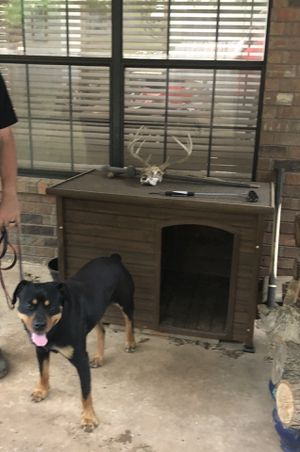 Dog House for Sale in Choctaw, OK