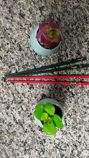 Wood Chopsticks and mini succulents for Sale in San Antonio, TX