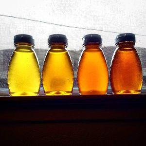 Raw honey for Sale in Sacramento, CA
