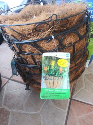 Coco plant holders for Sale in Kissimmee, FL