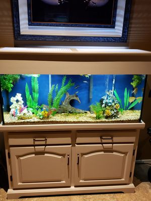 55 gal aquarium $300 FIRM! for Sale in Phoenix, AZ