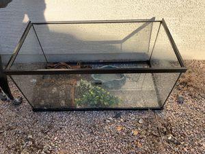 40 Gallon Reptile Tank Set for Sale in Glendale, AZ