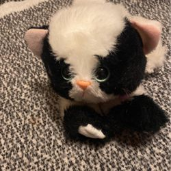 KITTY KITTY KITTENS BY TYCO for Sale in Princeton,  NJ