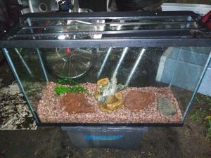 Big nice clean aquarium had saltwater fish in it with a lot of accessories for Sale in Orlando, FL
