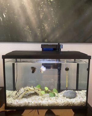 10 gallon aquarium/tank for Sale in Rialto, CA