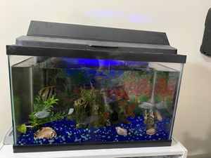Fish aquarium with 4 fishes ( Angel fish not included) for Sale in Queens, NY
