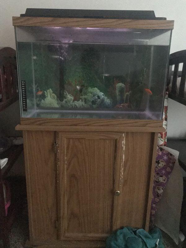 7 home aquariums