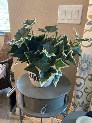 Fake plant and ceramic pot for Sale in Orlando, FL