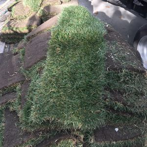 Fresh Sod $3 dollars Square Foot for Sale in Los Angeles, CA
