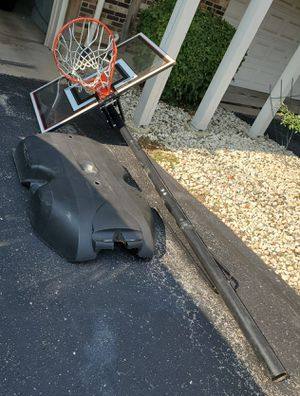 Lifetime Elite Basketball Hoop for Sale in Inverness, IL
