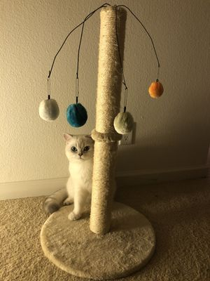 cat tree for Sale in San Diego, CA