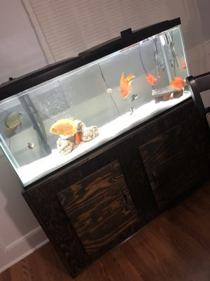 55 Gallon Aquarium/Tank for Sale in Woodbridge, VA