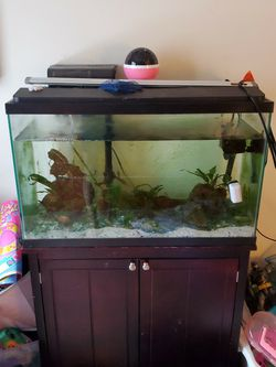 29 Gal Fish Tank for Sale in Sykesville,  MD