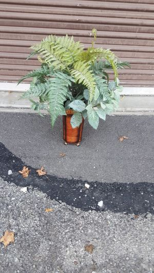 Plant with vase fake for Sale in Pittsburgh, PA