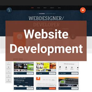 Website Development for Sale in Lansing, MI