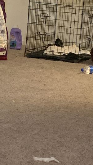Dog kennel 2ftx3ft for Sale in Vacaville, CA