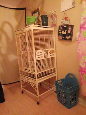 Steel bird cage 3 love birds nesting box. 3 eggs..will sell seperate or together for Sale in Cartersville, GA