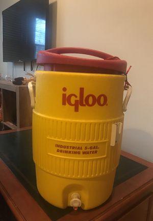 5 gallon igloo cooler for Sale in Alexandria, VA