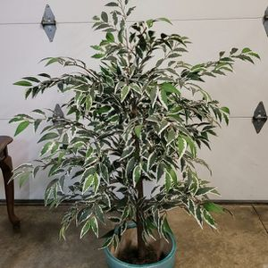 Beautiful Artificial Plant with Ceramic Pot for Sale in Newport Beach, CA