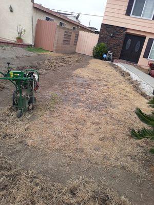 Sod Grass for Sale in Carson, CA