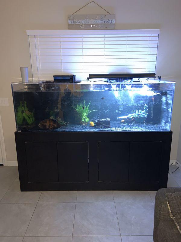 180 gallon fish tank (acrylic clear for life)