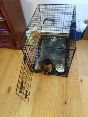 Cage for dog for Sale in Richmond, CA
