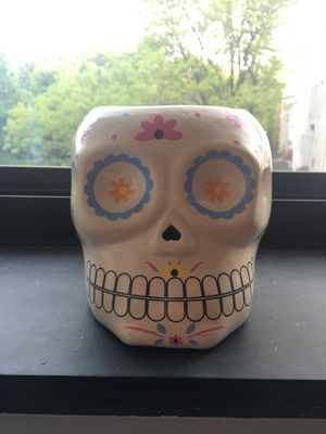Skull plant holder for Sale in Brookline, MA