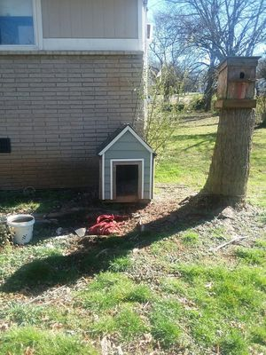 Dog house for Sale in KIMBERLIN HGT, TN