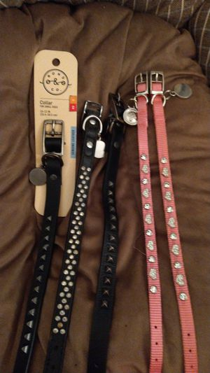 5 dog collars all new for Sale in Philadelphia, PA