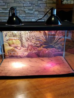 20 Gallon Reptile Tank for Sale in Bentleyville,  PA