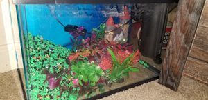 5 gallon aquarium, pump, and filters for Sale in White Settlement, TX