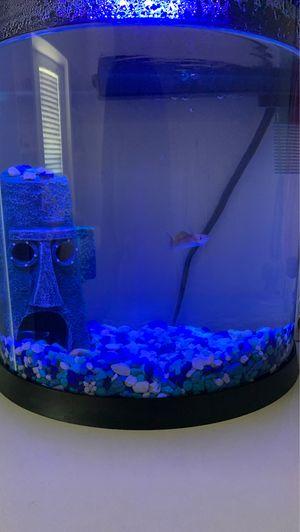 3.5 gallon fish tank for Sale in Miami, FL