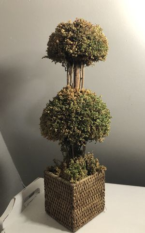 Gorgeous artificial topiary for Sale in Peoria, AZ