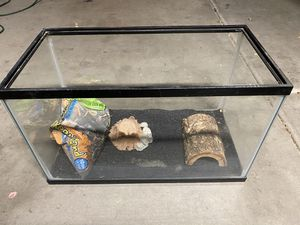 Glass tank for reptile or whatever for Sale in Mesa, AZ