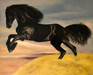 Original oil painting of Stallion 16X20 for Sale in Fremont, CA