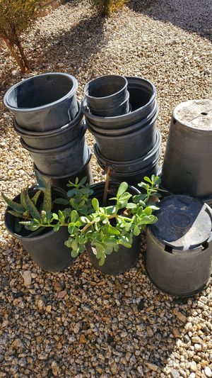 Flowers 💐 pots with 2 real plants. for Sale in Victorville, CA