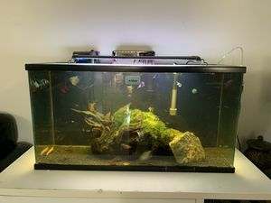 Fish tank 30 gallon including everything! for Sale in San Fernando, CA