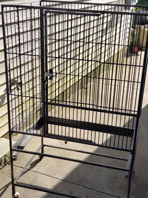Bird cage and sun conures for Sale in Easton, MA