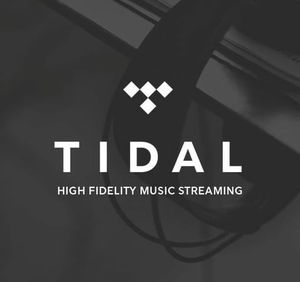Tidal Hi Fi 6 months for Sale in Los Angeles, CA