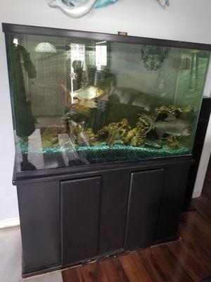 Aquarium 90 Tall for Sale in San Diego, CA