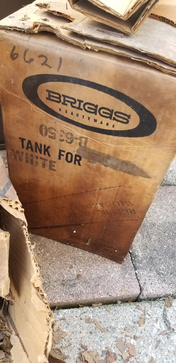 Briggs wall mount toilet