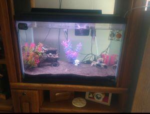 20 gallon fish tank for Sale in Delaware, OH