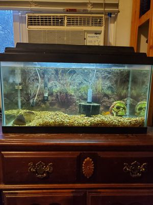 15 gal fish tank with everything you need for Sale in Portland, OR