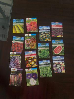 200-300 Wide Variety Seed Packs for Sale in St. Petersburg, FL