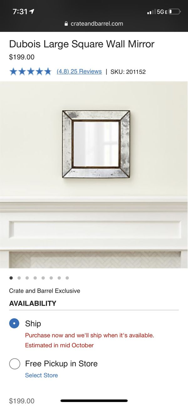 Crate and Barrel Wall dubois mirror