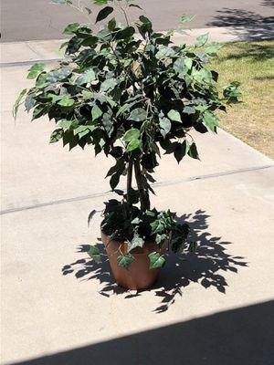 Fake plant ceramic pot for Sale in Phoenix, AZ
