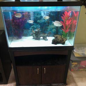 65 Gallon Aquarium for Sale in Phoenix, AZ