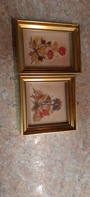 Dried flowers in picture frames for Sale in Southborough, MA