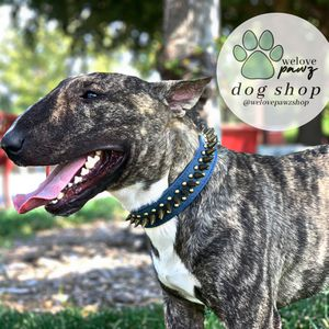 DOG COLLARS for Sale in Lathrop, CA